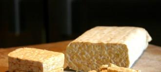 Potensi Probiotik Dalam Menurunkan Kolesterol Tubuh