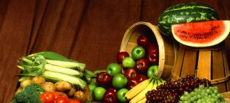 Fungsi Probiotik dalam Saluran Cerna dan Kesehatan